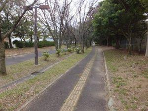 南港野鳥園への緑道