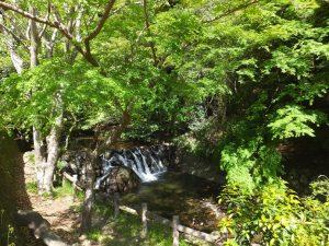 箕面大滝ハイキングコース