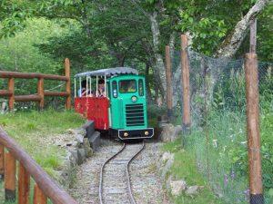 妙見の森シグナス森林鉄道