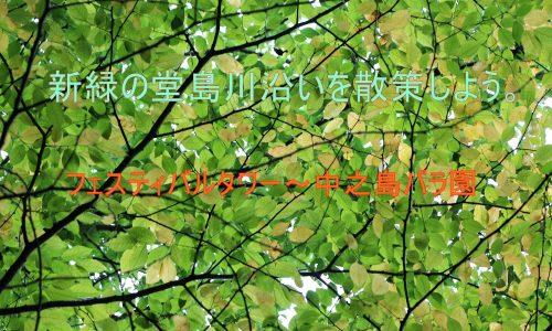 大阪堂島川沿いの緑道