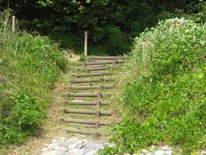 今城塚古墳公園から古墳へと続く階段