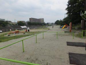 芥川桜堤公園の様子