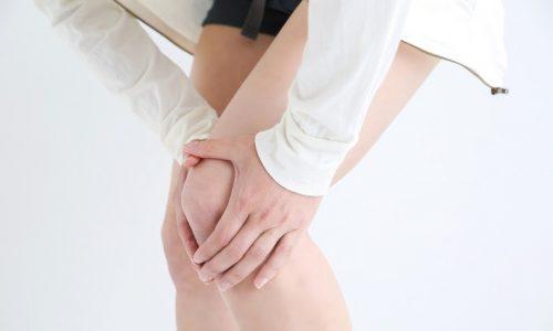 膝軟骨の再生